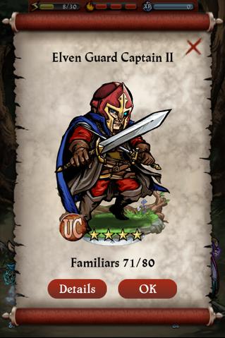 File:Elven Guard Captain II Capture Screen.png