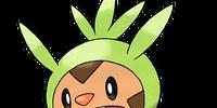A Kalos Adventure/Characters & Pokemon/Shauna