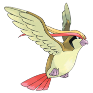 Blue's Pidgeot