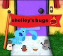 Shelley's Bugs