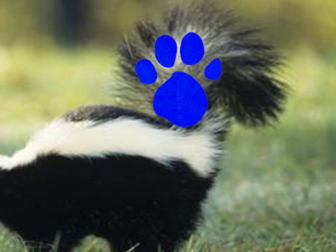 File:Striped Tail (2nd Blue's Clues).png