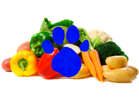File:Vegetables (3rd Blue's Clues).png