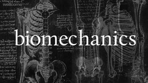 Bone biomechanics A Big Picture film by the Wellcome Trust