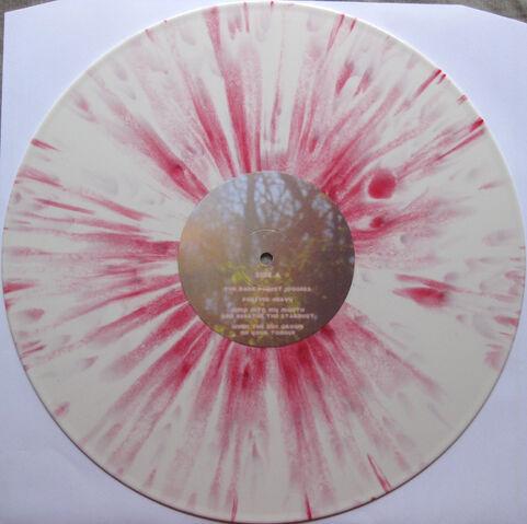 File:Bmsr dg vinyl 2.jpg