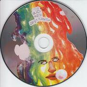 Bmsr dg disc