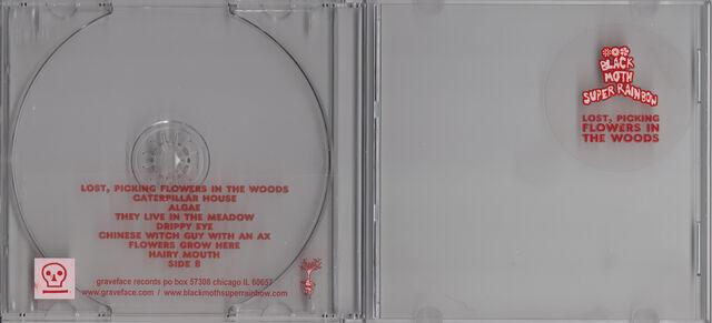 File:Bmsr lpfitw cd front.jpg