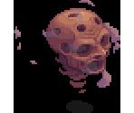 Skullen