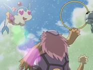 Dolphin Bomber5