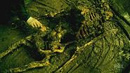Skeletonpilot2