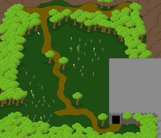 File:Newbie Field.jpg