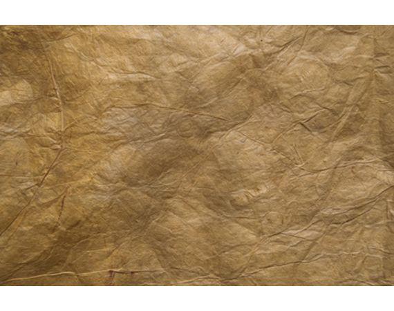 File:Tea parchment.jpg