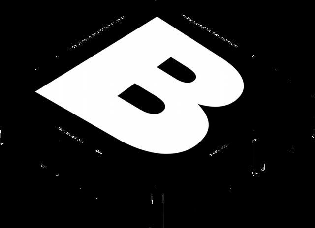 File:Boomerang2014logo-recreation zps7369e0dd.png