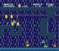 Super Mario 2 1998001