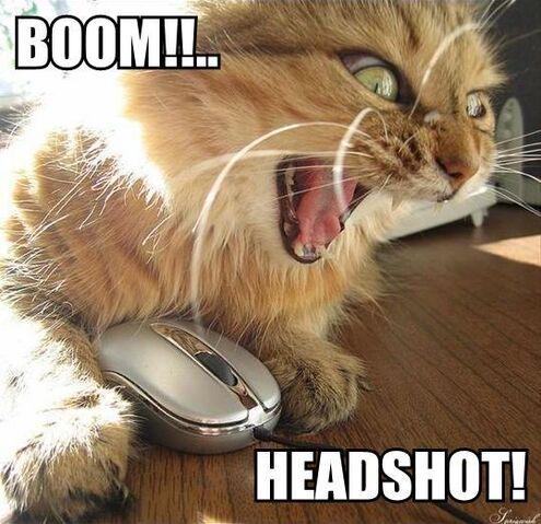 File:Boomheadshot.jpg