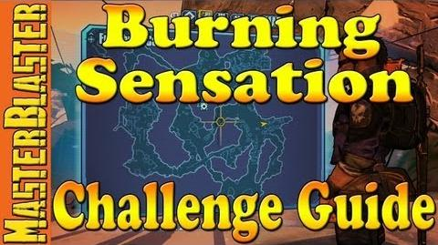 Borderlands 2 Burning Sensation Challenge Guide