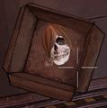 Gwen's Head.png