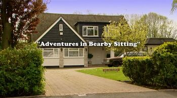 Adventures in bearby sitting