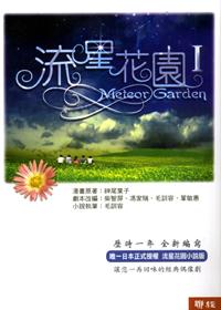 File:Meteor-Garden-novel.jpg