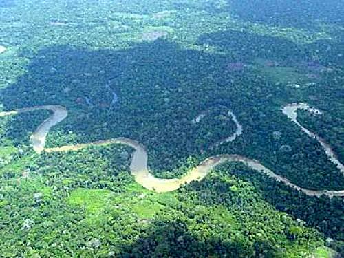Foto - Amazonas.jpg