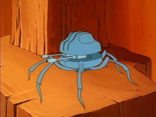 File:Pom-Pom Spider.jpg