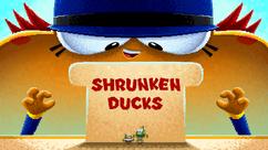 ShrunkenDucks