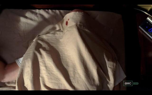 File:Salud - Walt under sheet.jpg