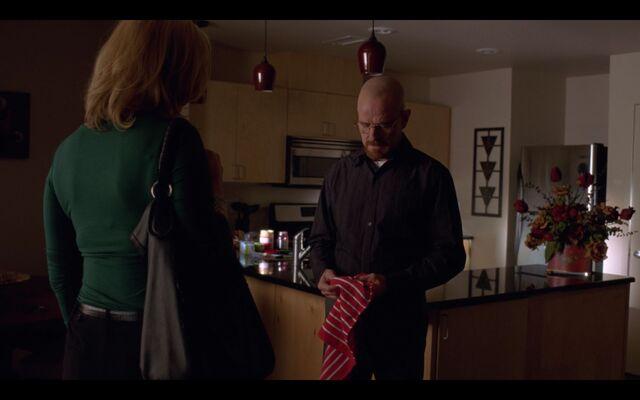 File:Walt's second Apartment -6.jpg