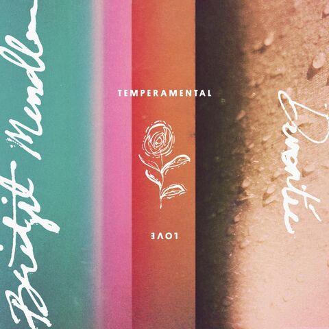 File:Temperamental Love Artwork.jpg