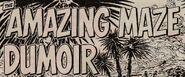 The Amazing Maze Dumoir
