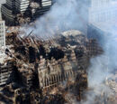 Militant activity of Osama bin Laden
