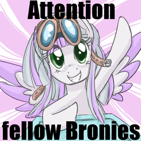 File:Happyface attention fellow bronies.jpg