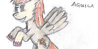 Levitas Aguila
