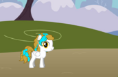 Star Catcher as a Filly