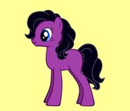 Merlot Pony