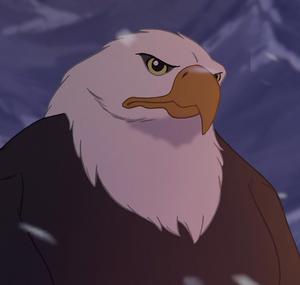 Sitka-eagle