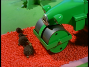 BobSavestheHedgehogs43