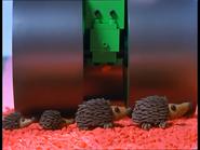 BobSavestheHedgehogs53