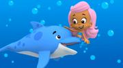 Hey Dolphin A