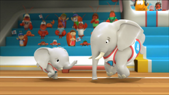 Elephant58