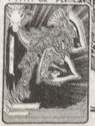 Latale Shield Dragon (Manga)