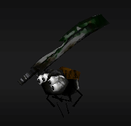 Spider Ninja