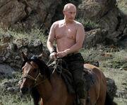 Vladimir-putin-on-hoilday-pic-549464373
