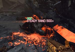 Steadyhand