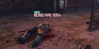 Blind Fire