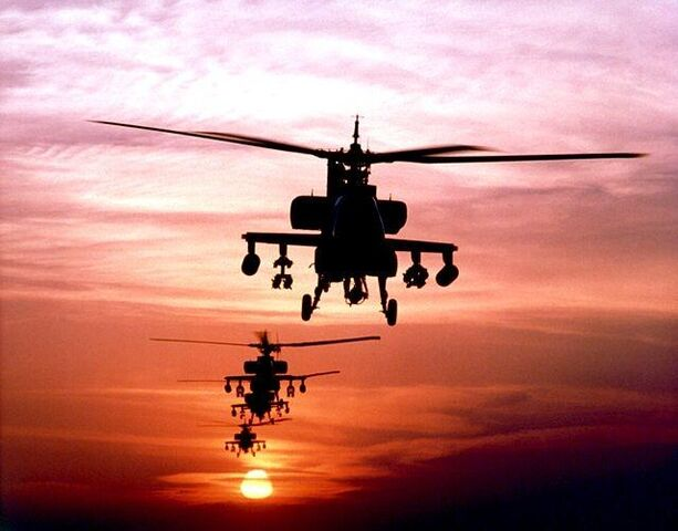 檔案:AH-64 Apache FOB Key West.jpg