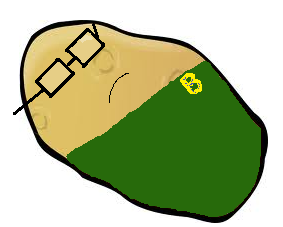 File:Earnest Potato.png