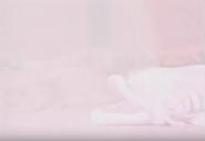 Screen Shot 2015-11-18 at 9.11.59 am