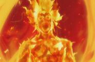 Flameassimilation
