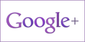 File:Google-reviews.png
