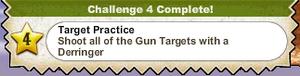 Target Practice.